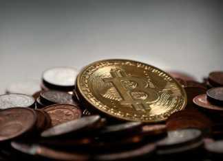 Скрывать пароль от криптовалютного кошелька - ПРЕСТУПЛЕНИЕ