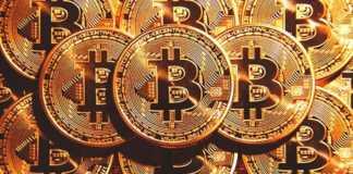 НЕВЕРОЯТНО Первая в мире Биткоин-семья. Bitcoin family