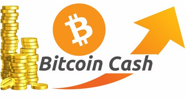 Особенности и перспективы развития Bitcoin Cash